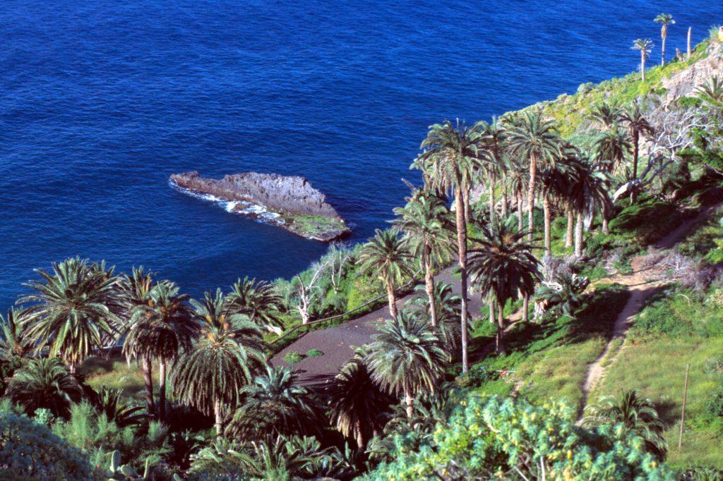 La Rambla de Castro Foto: Turismo de Tenerife