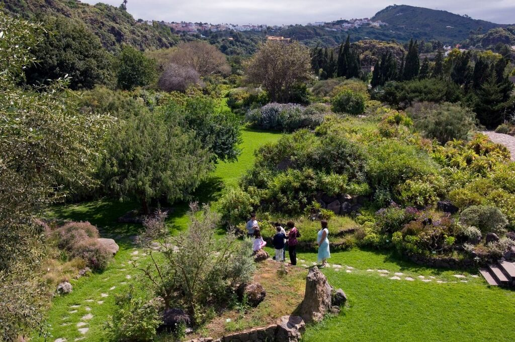 JardínBotánicoVierayClavijo.ZonaTafira