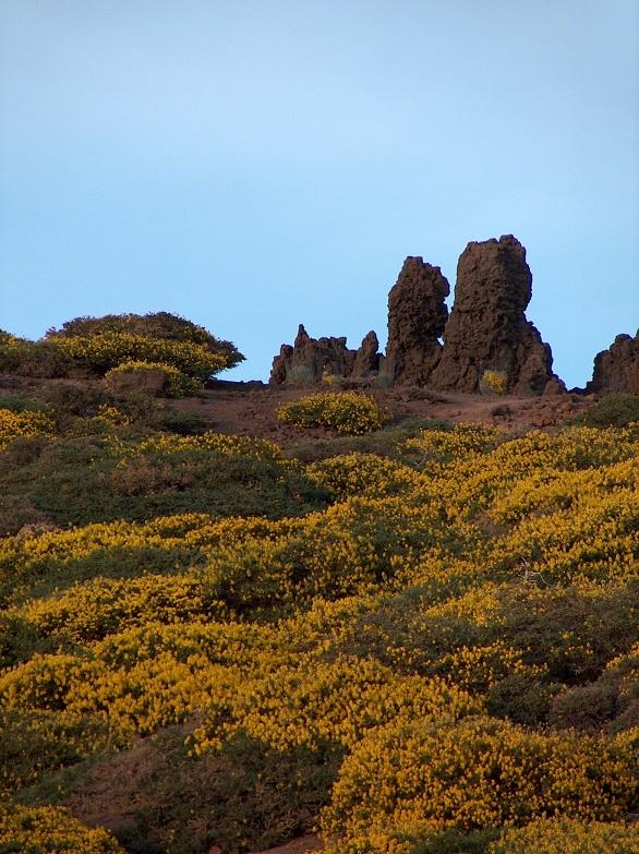 Roque de Los Muchacho