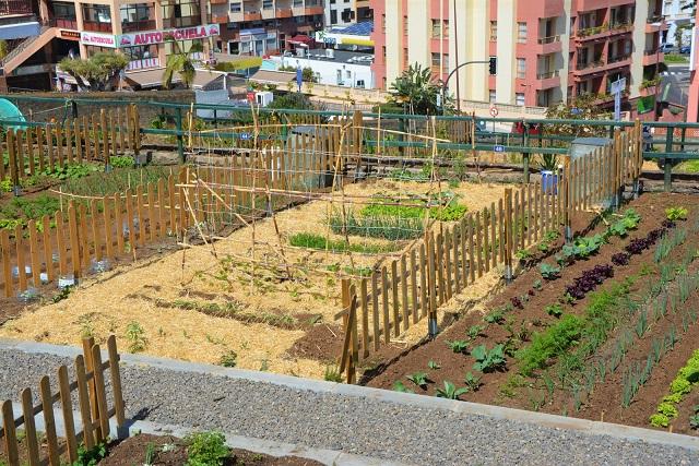 Huerto Ecologico
